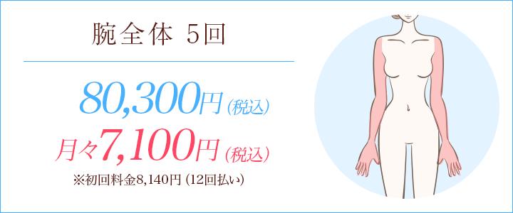 腕全体5回 73000円、月々7200円※初回料金8086円(12回払い)