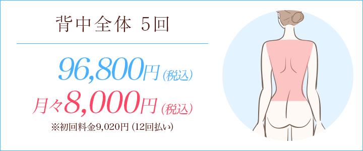 背中全体5回 96800円、月々8000円※初回料金9020円(12回払い)