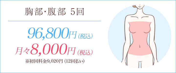 胸部・腹部5回 90000円、月々8000円※初回料金9020円(12回払い)