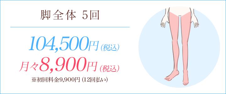 脚全体5回 104500円、月々8900円※初回料金9900円(12回払い)