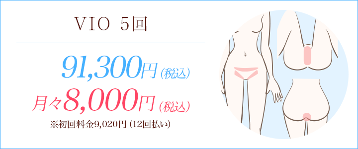 VIO5回 91300円、月々8000円※初回料金9020円(12回払い)