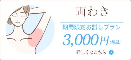 両わき 期間限定3000円