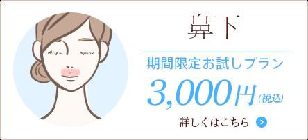 鼻下 期間限定3000円